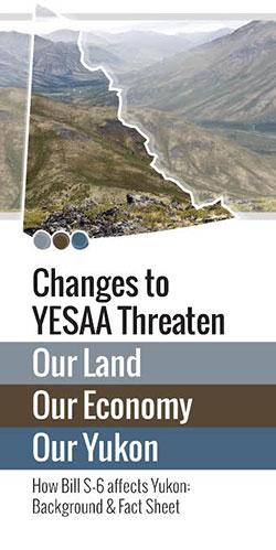 yesaa-brochure-small